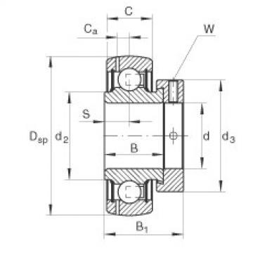 FAG شعاعي إدراج الكرات - GRAE45-XL-NPP-B