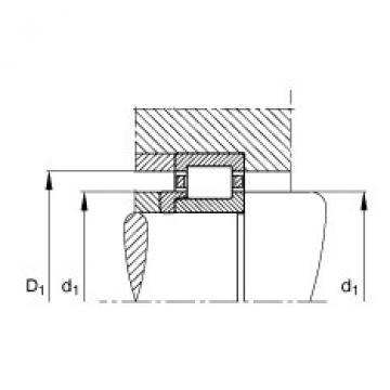 FAG Zylinderrollenlager - NJ215-E-XL-TVP2 + HJ215-E