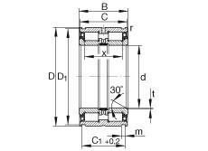 FAG محامل أسطوانية - SL04300-PP