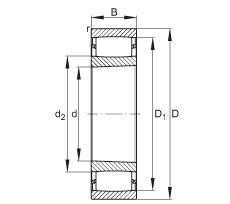 FAG محامل حلقية - C3160-XL-K