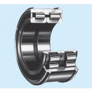 Bearing RS-4924E4